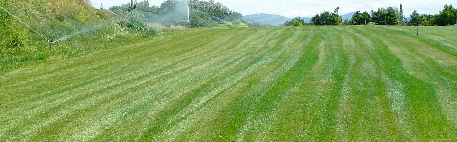 Terre v g tale enrichie au compost trets gardanne et aix - Gazon en plaque toulouse ...